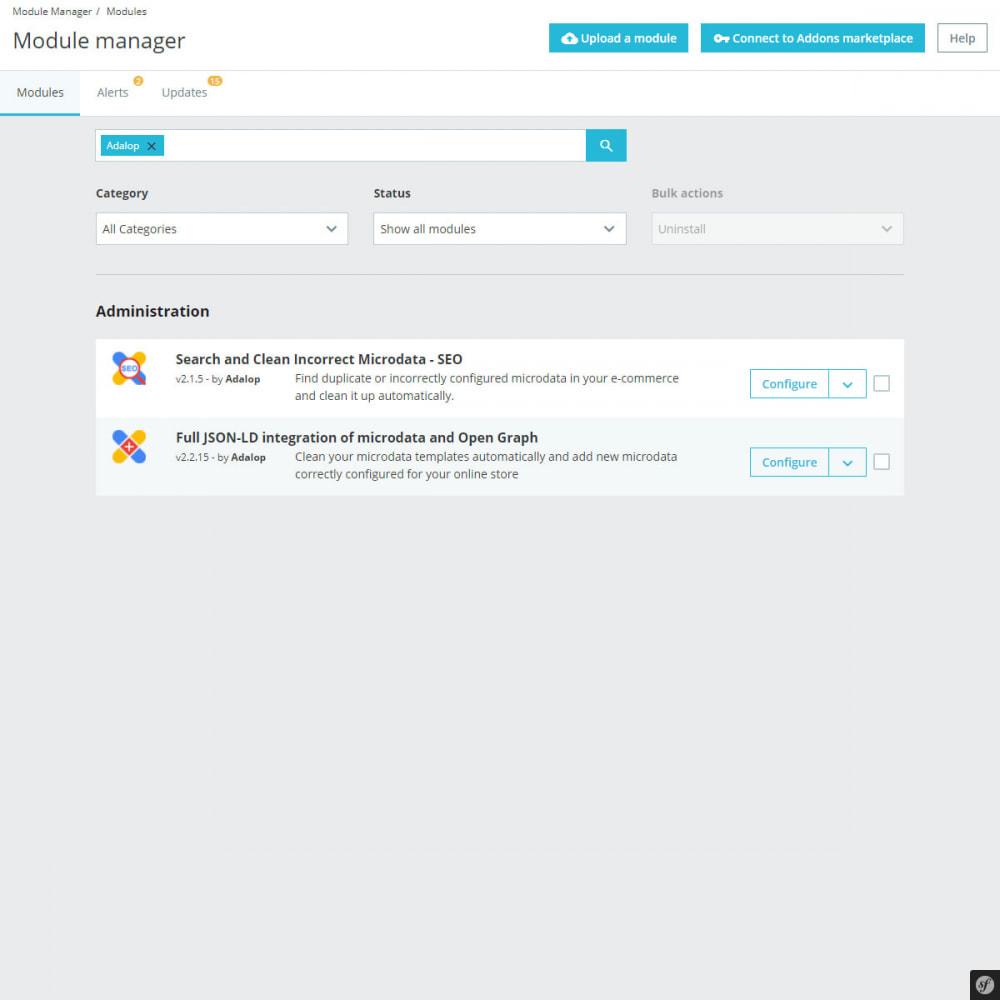 module - SEO (Posicionamiento en buscadores) - Busca y Limpia Microdatos Incorrectos - SEO - 2