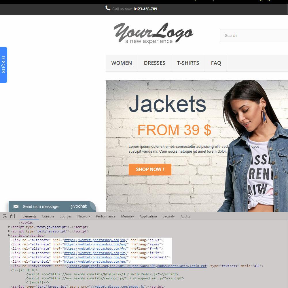 module - URL y Redirecciones - SEO Google Hreflang Tag and Canonical URLs Tag - 4