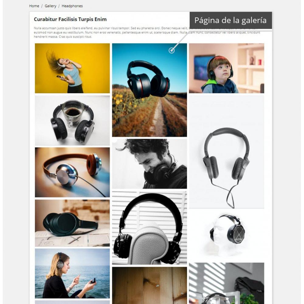 module - Sliders y Galerías de imágenes - Professional Gallery - 2