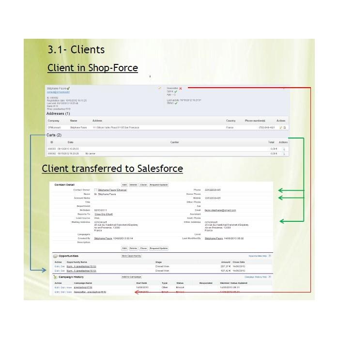module - Export data - Shopforce v1.11 : Salesforce's interface full - 2