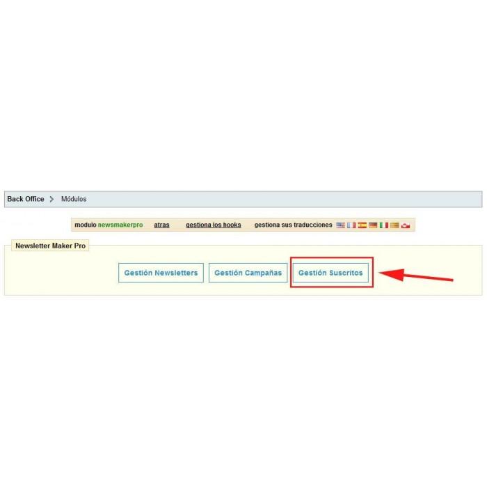 module - Newsletter y SMS - Newsletter Maker Pro - 9
