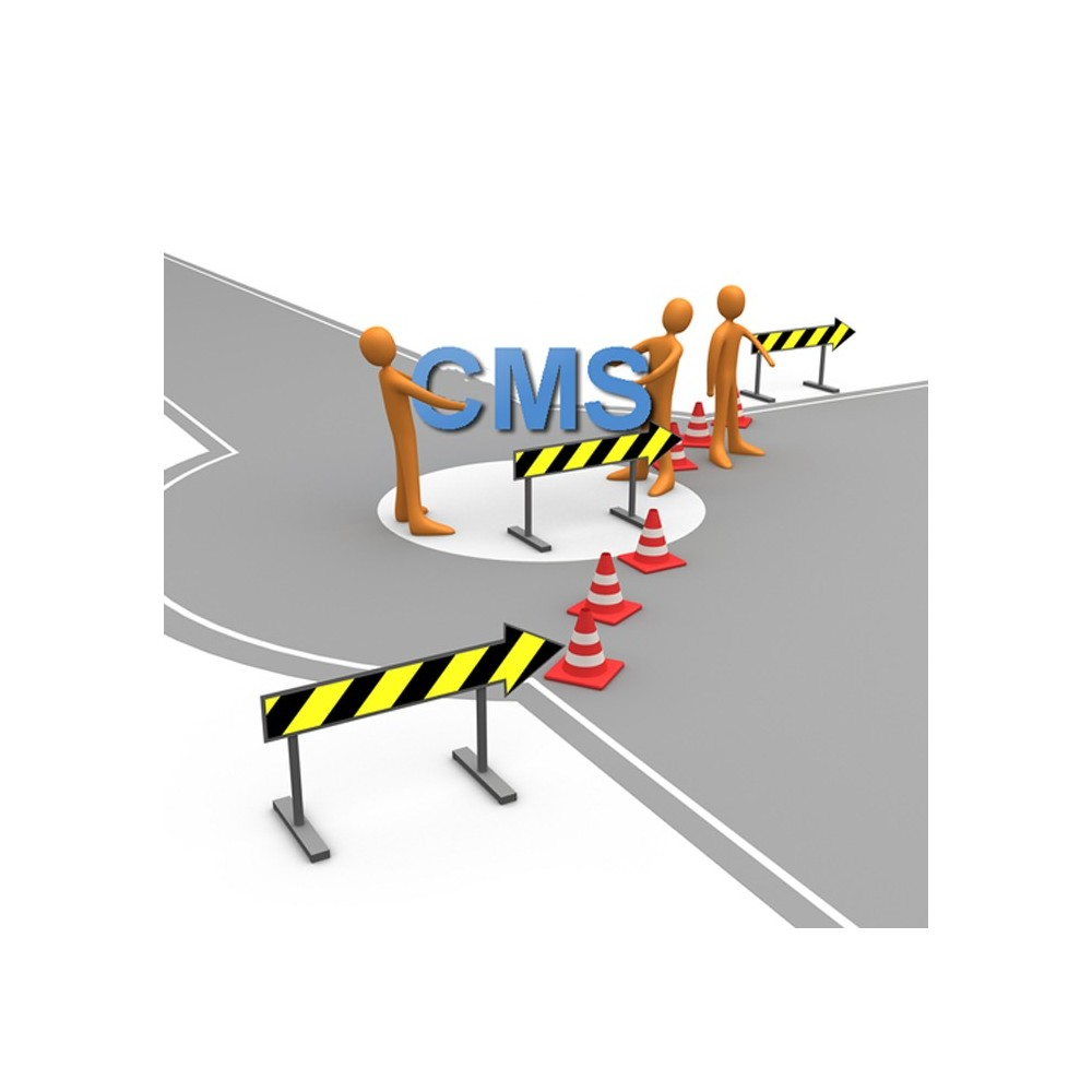 module - Segurança & Acesso - Private CMS - Customer Group CMS Authorization - 2
