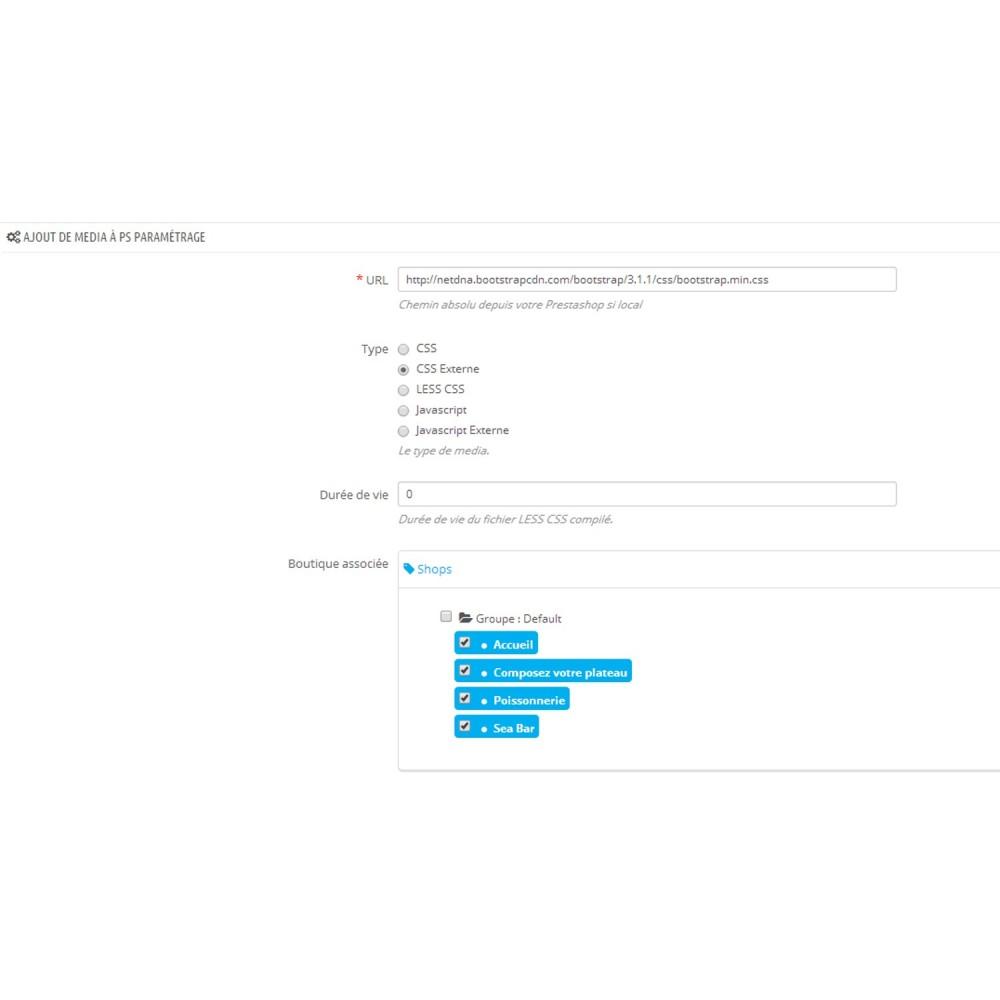 module - Outils d'administration - Ajout de Media (CSS, LESS, JS) - 3