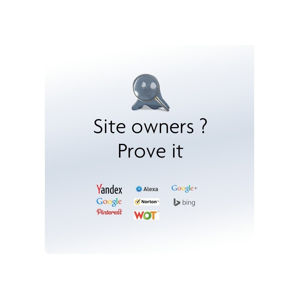 module - SEO (Indicizzazione naturale) - Integration of the webmaster tools verification code - 1