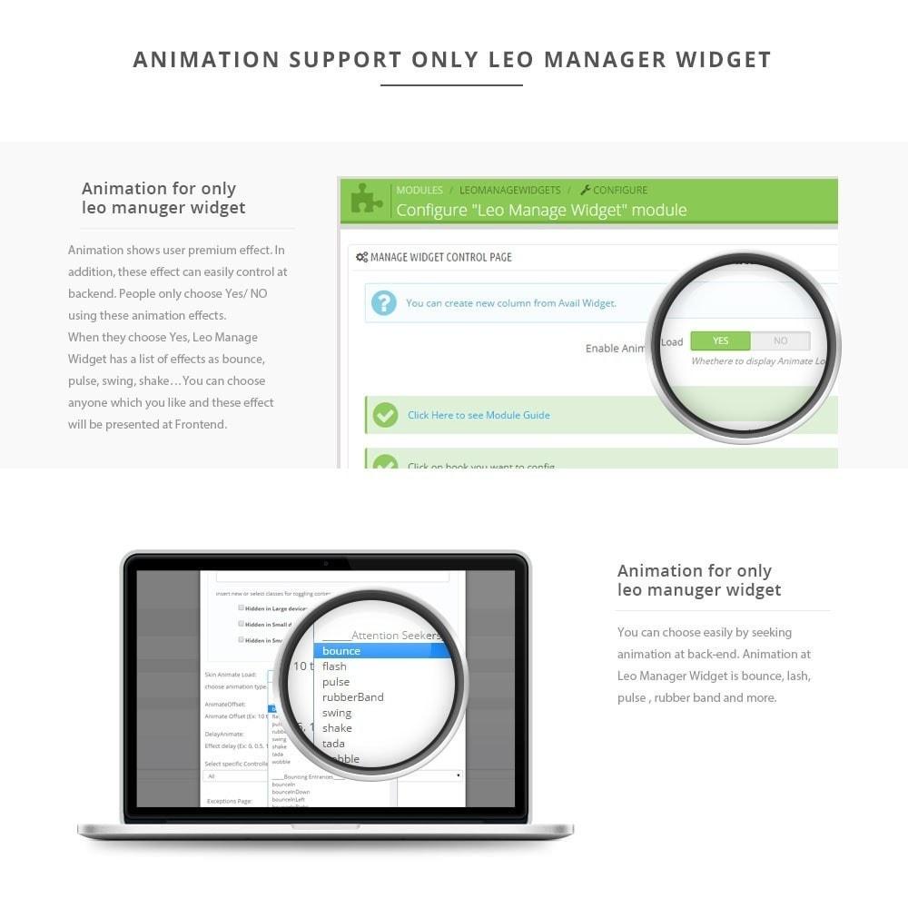module - Individuelle Seitengestaltung - Leo Manage Widget - 5