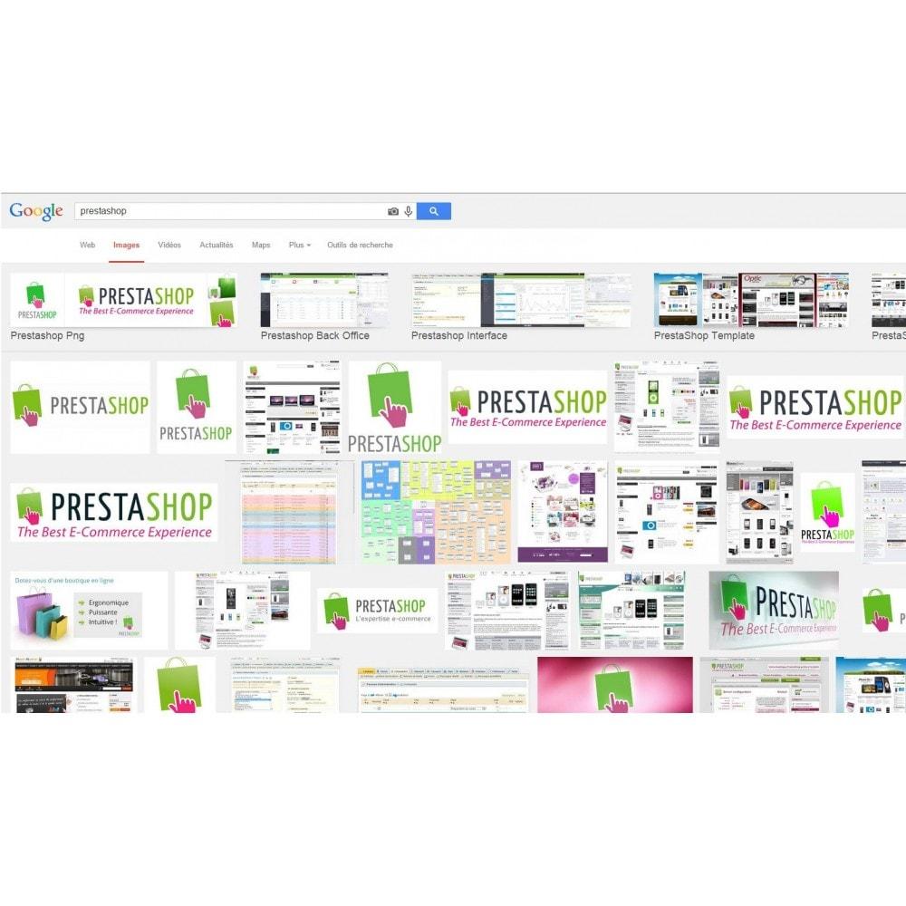 module - URL y Redirecciones - Google Image Redirect - 3