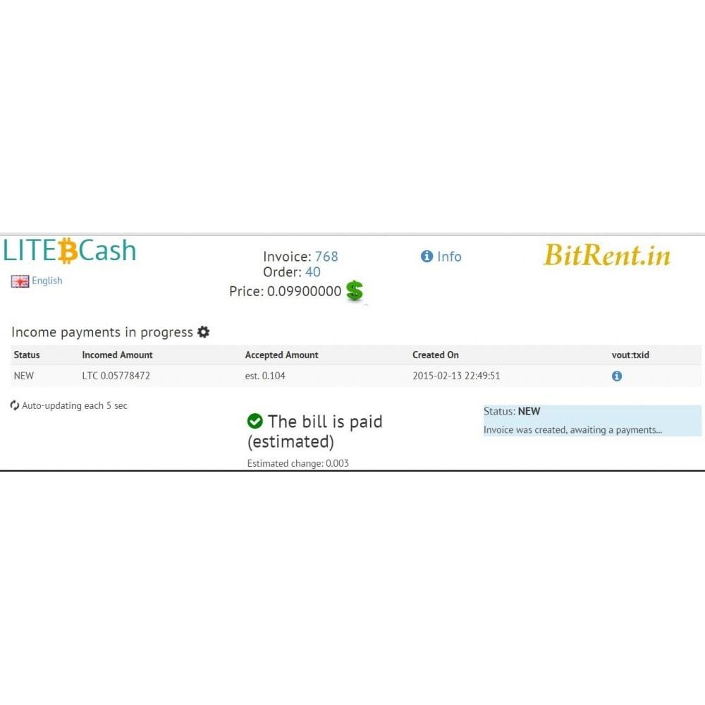 module - Альтернативных способов оплаты - Биткоин и криптовалюты через LITE.cash - 4