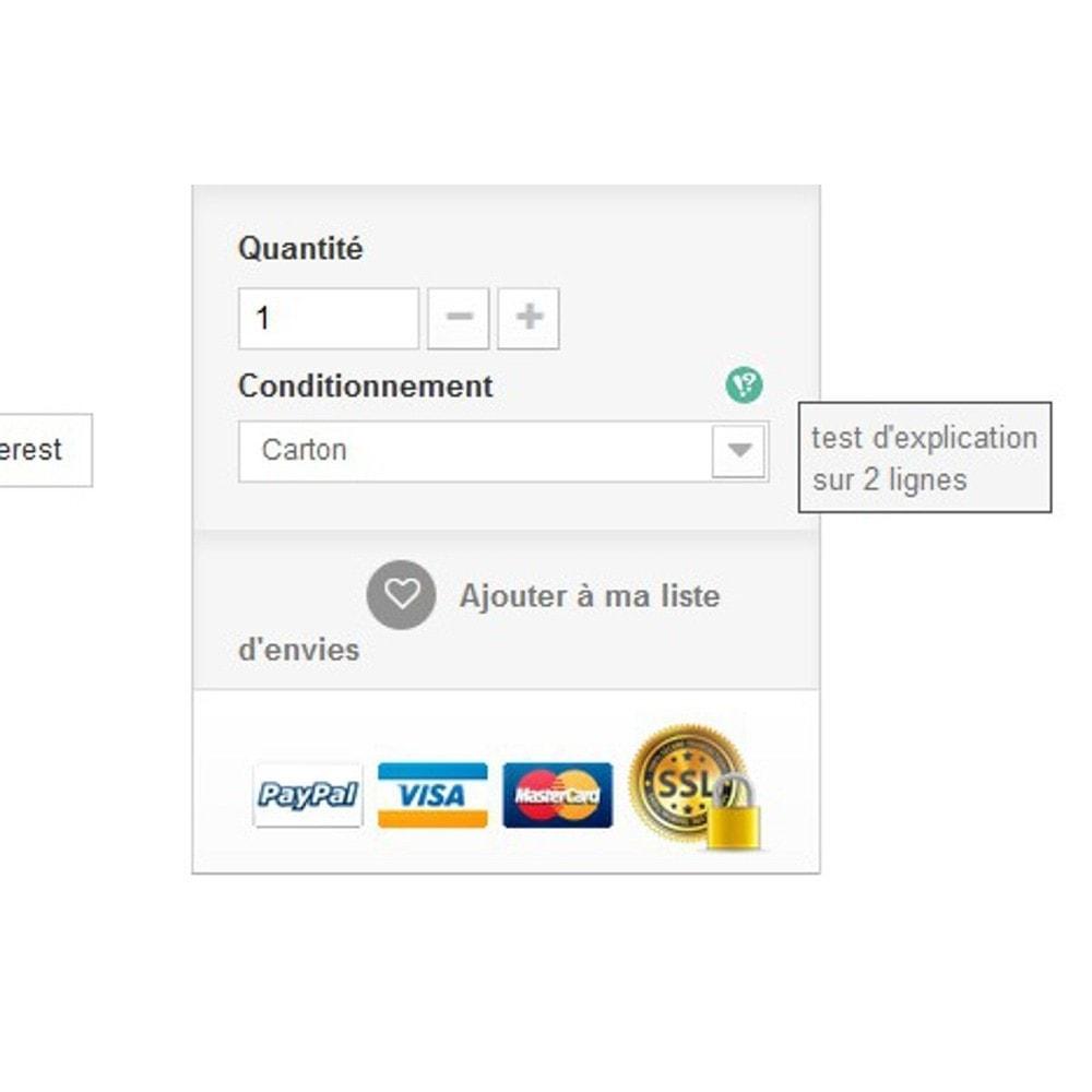 module - Information supplémentaire & Onglet produit - Explications d'attributs - 4