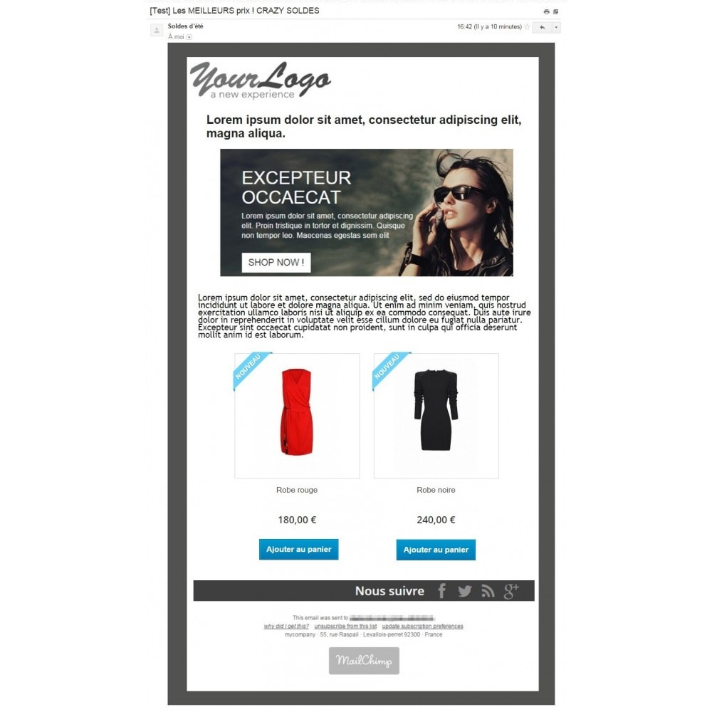pack - Les offres du moment - Faites des économies ! - Promo (Pack) : Newsletter Mailchimp + Bandeau Promo - 2