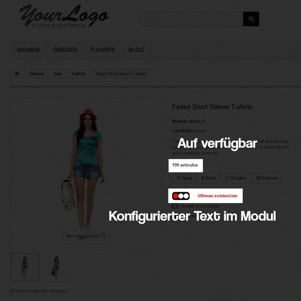module - Zusatzinformationen & Produkt-Tabs - Anzeige des Warenbestandes auf der Produktseite - 7