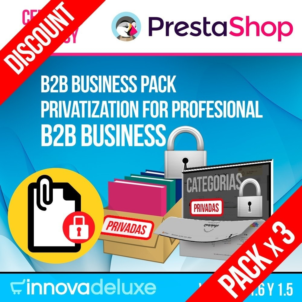 pack - B2B - Pack 2 - B2B Business (privatization for profesionals) - 1