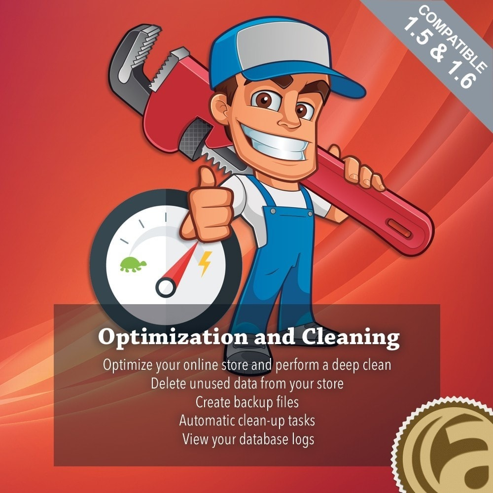 module - Desempenho do Site - Optimization and Cleaning - 1