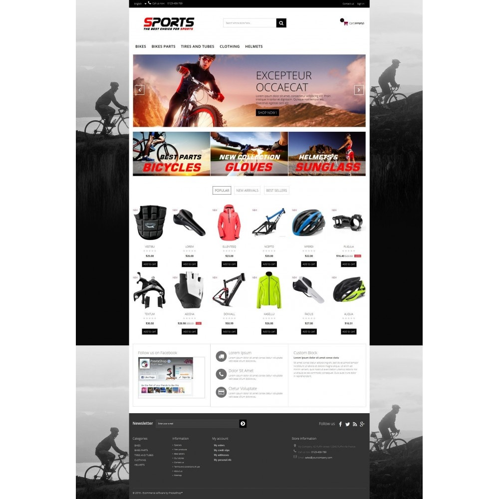 theme - Sport, Loisirs & Voyage - Sports Multipurpose HTML5 - 4