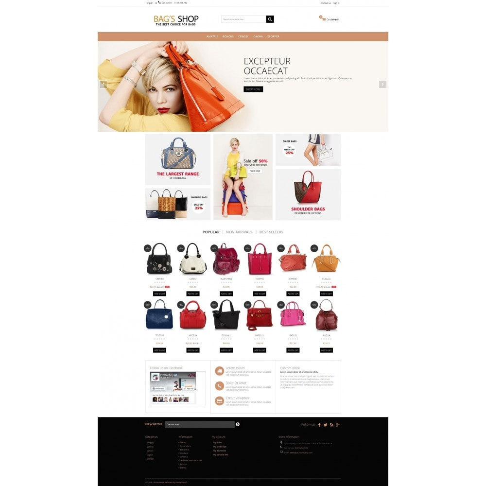 theme - Schmuck & Accesoires - Bags shop Multipurpose HTML5 - 5
