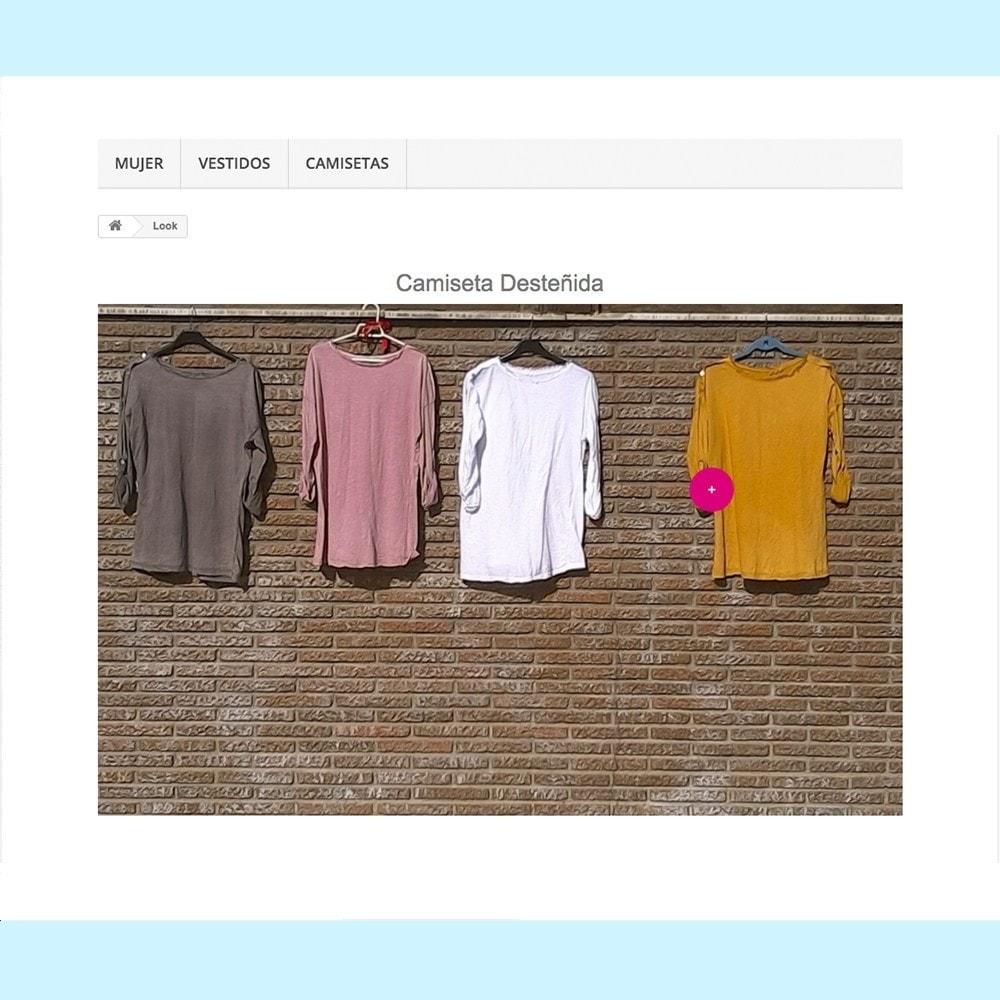 module - Personalización de la página - Looks - 2