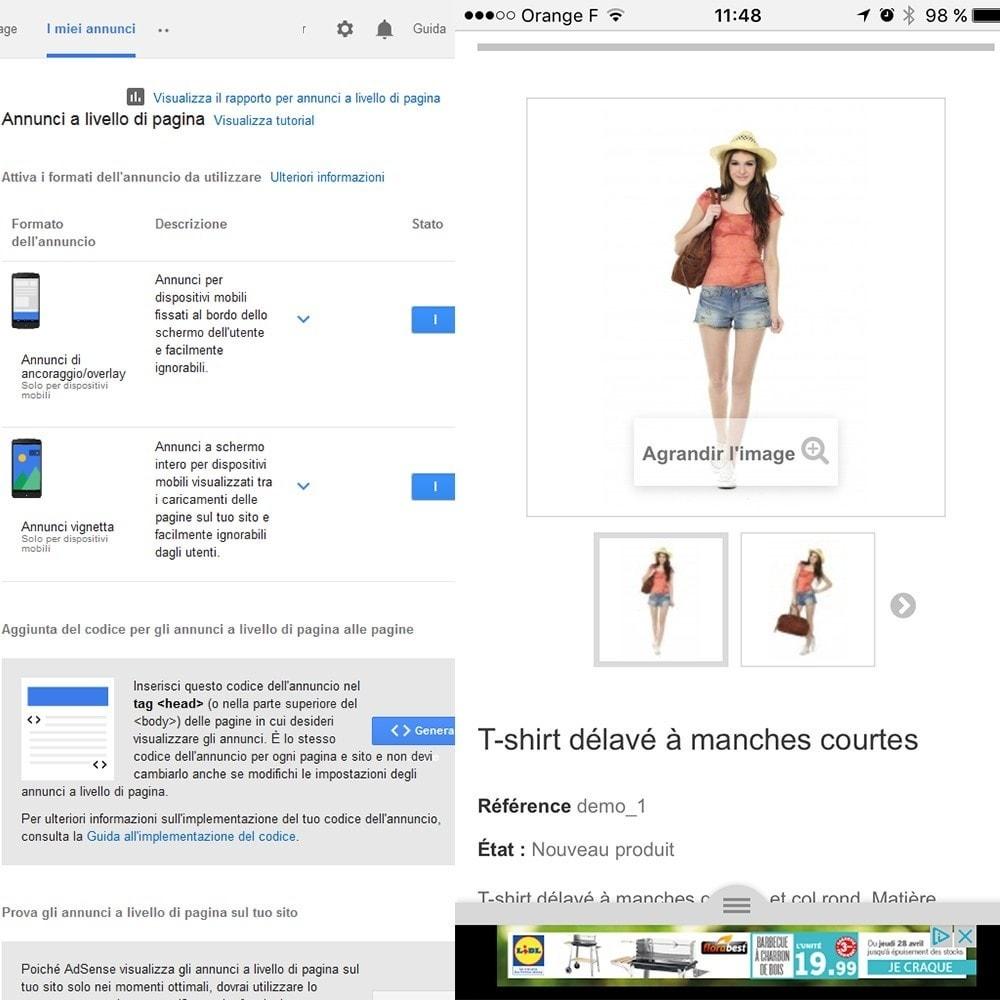 module - Indicizzazione a pagamento (SEA SEM) & Affiliazione - Google Adsense - 5