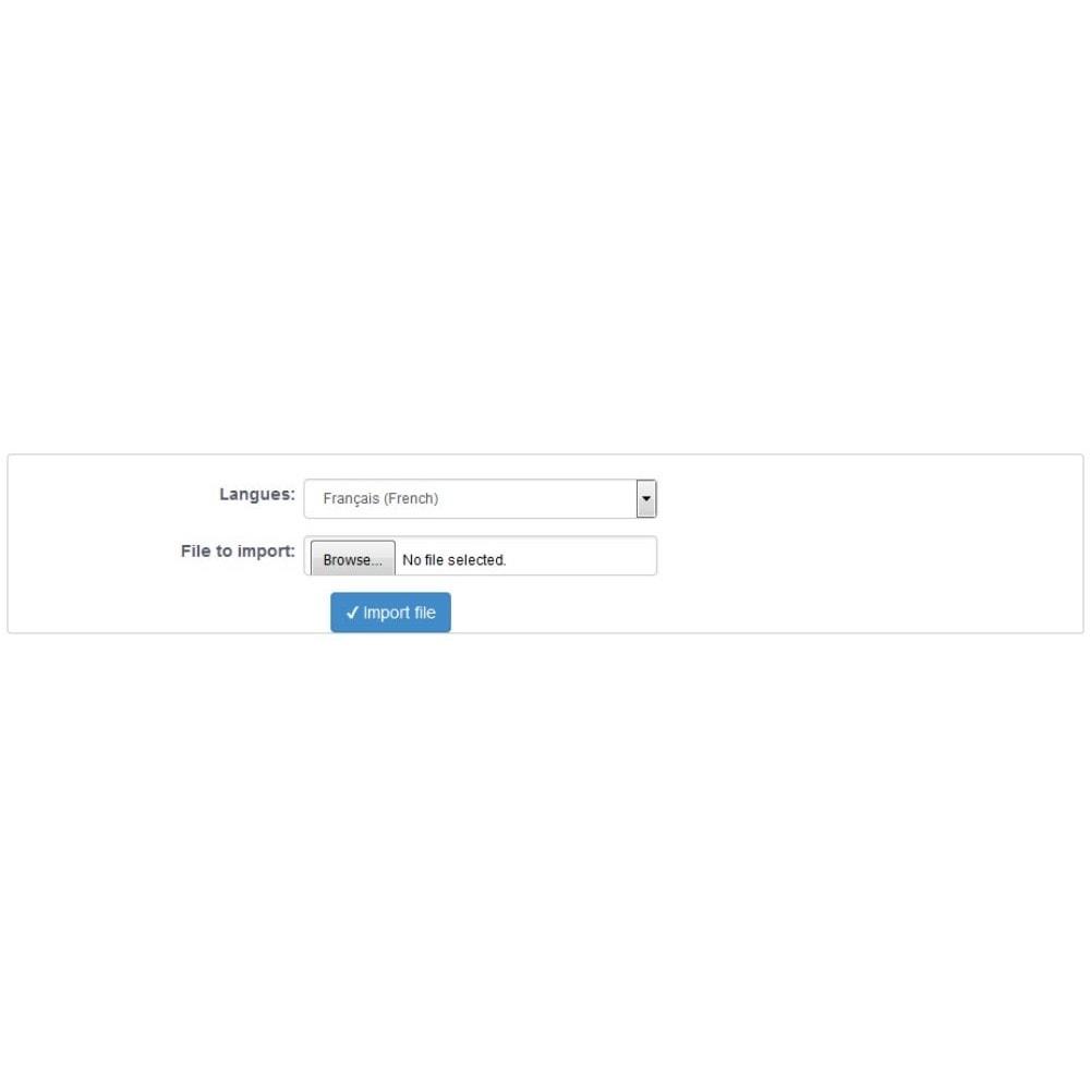module - Internationalisierung & Lokalisierung - SEO Premium Translations - 1