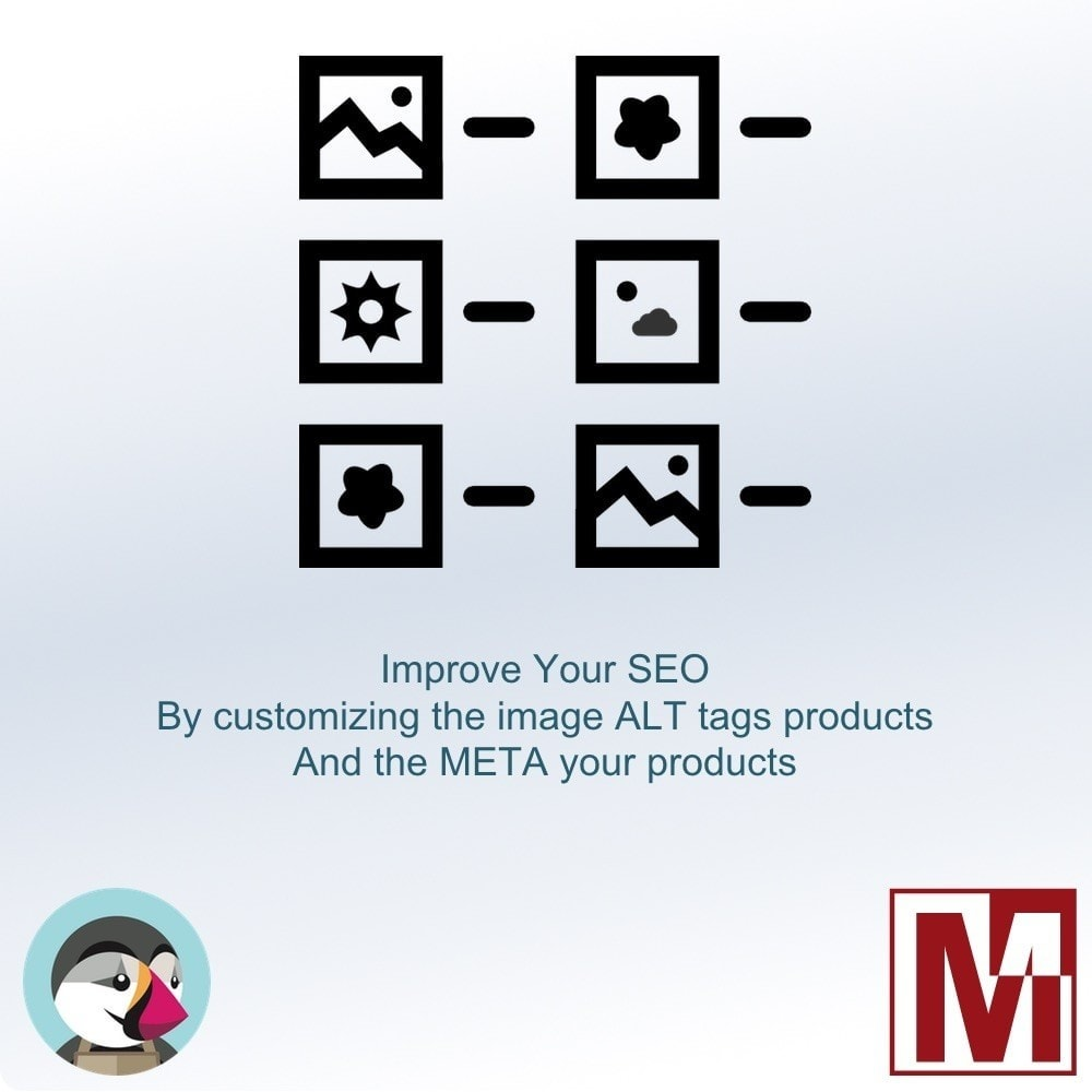 module - SEO (Posicionamiento en buscadores) - Manage the ALT tag of your images and meta products - 1