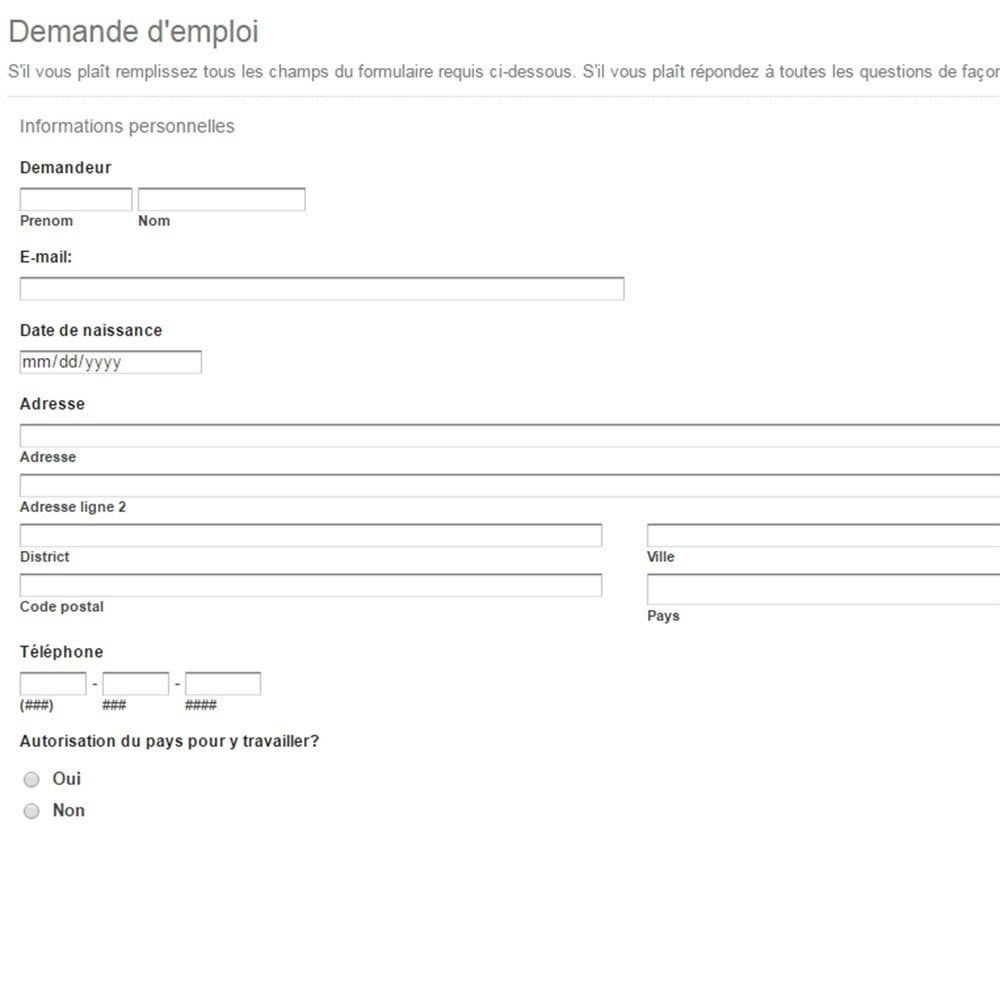 job-employment-application-form Job Application Form Demo on free generic, blank generic, part time,
