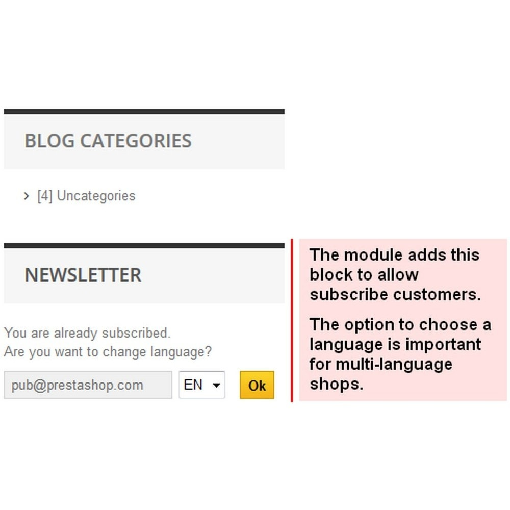 module - Newsletter y SMS - Sending newsletters to customers - 2