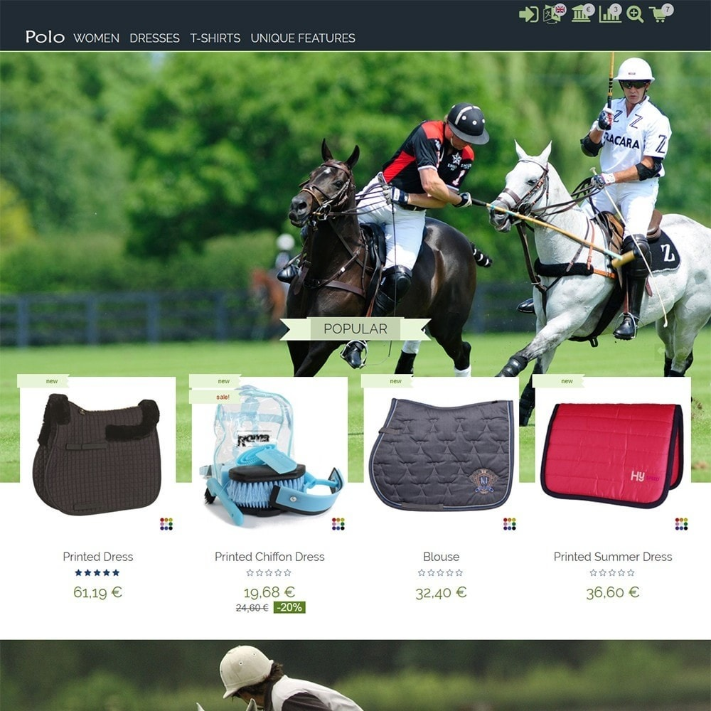 theme - Sports, Activities & Travel - Polo - 2