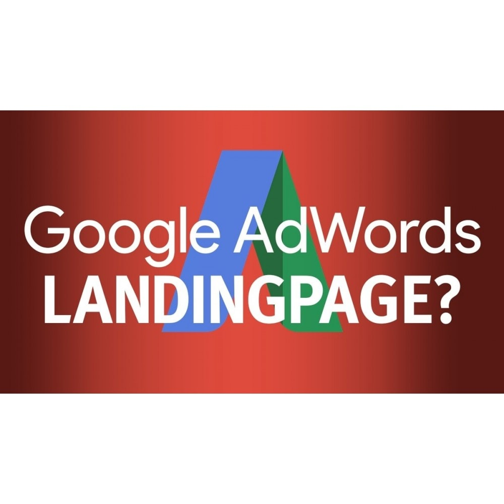 module - Remarketing & Carrelli abbandonati - convertizer - dynamic adwords landingpage - 1