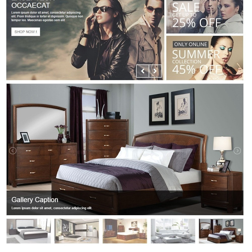 module - Sliders & Galeries - Responsive Images Photo Gallery with thumbnails - 2