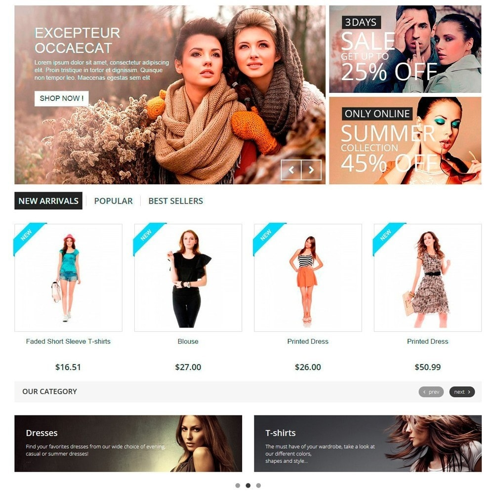 module - Slidery & Galerie - Responsive Carousel with Categories - 3