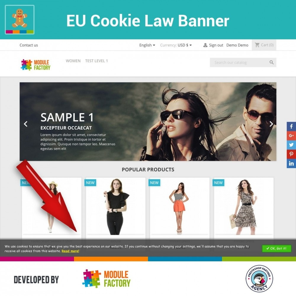 module - Marco Legal (Ley Europea) - EU Cookie Law Alert Banner and Cookie Blocker - 1