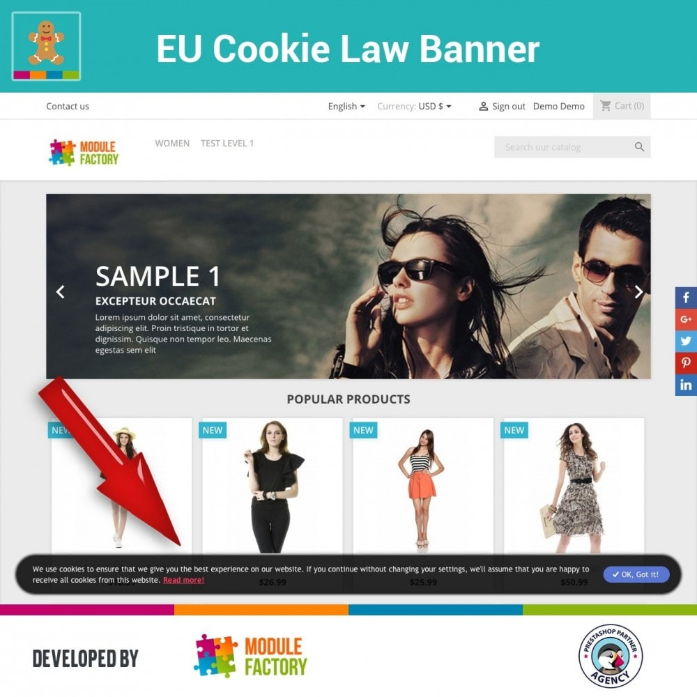 module - Marco Legal (Ley Europea) - EU Cookie Law Alert Banner and Cookie Blocker - 4