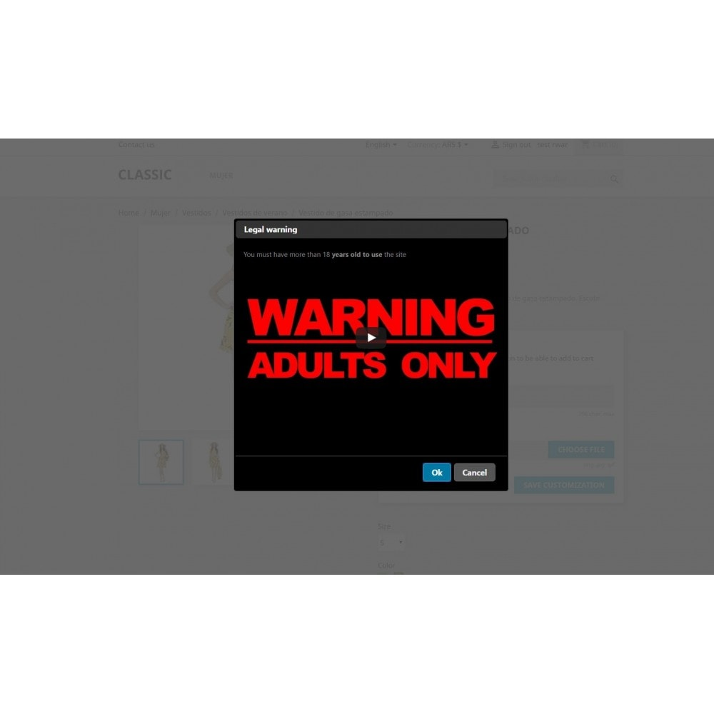 module - Segurança & Acesso - Legal Warning - Terms popup or adults site - 3
