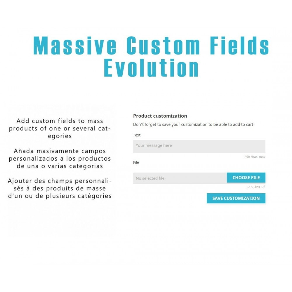 module - Versies & Personalisering van producten - Massive Custom Fields Evolution - 1