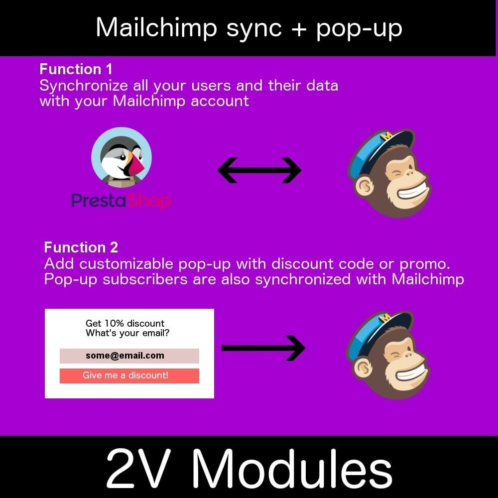 module - Newsletter y SMS - Easy Mailchimp integration - 2