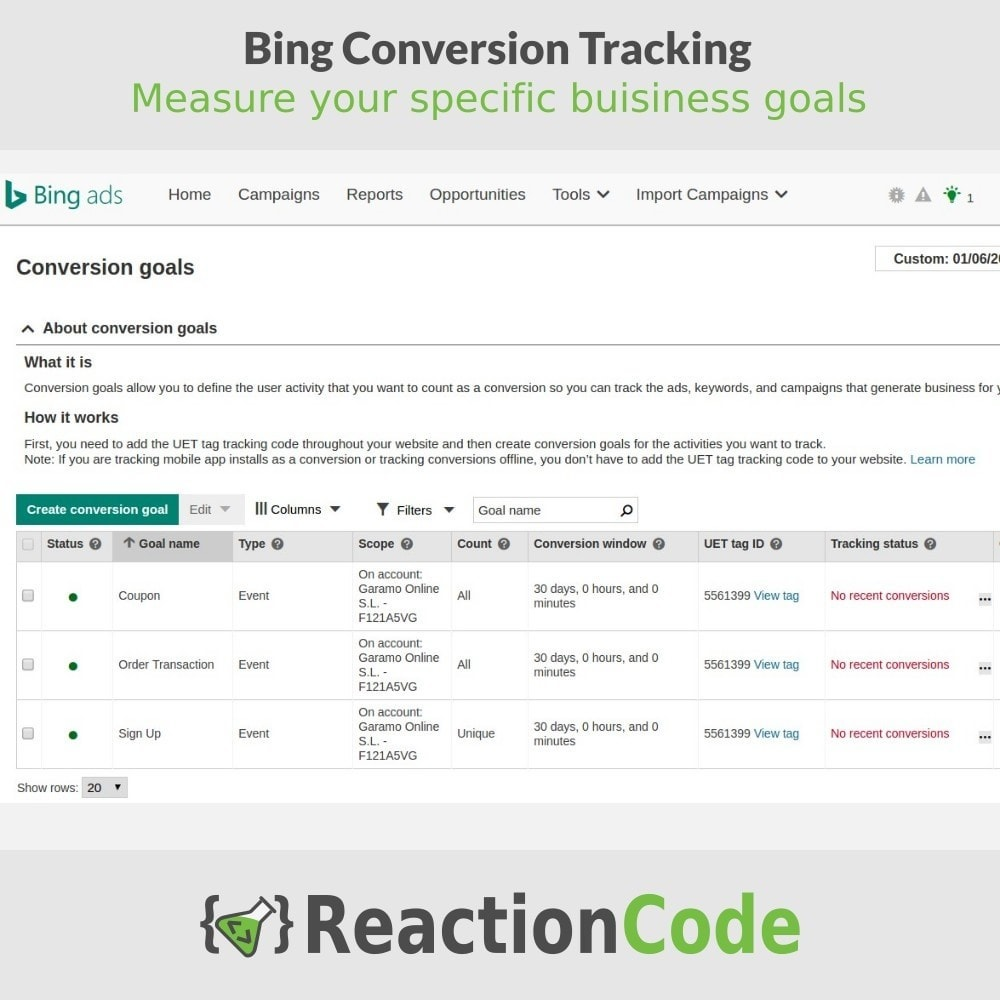 module - Analyses & Statistieken - Bing Conversion Tracking - 6