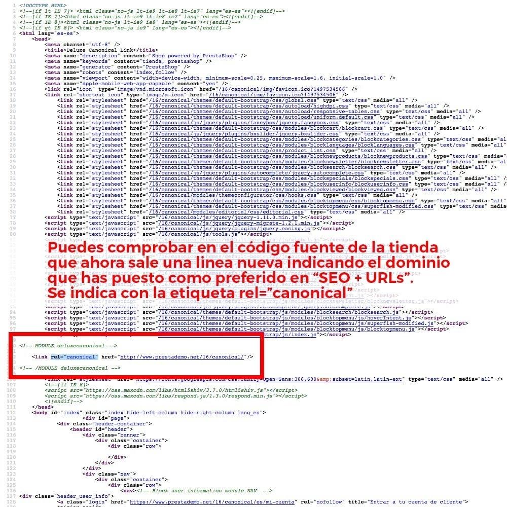 module - URL y Redirecciones - Información de redirección de URL canónica para Google - 4