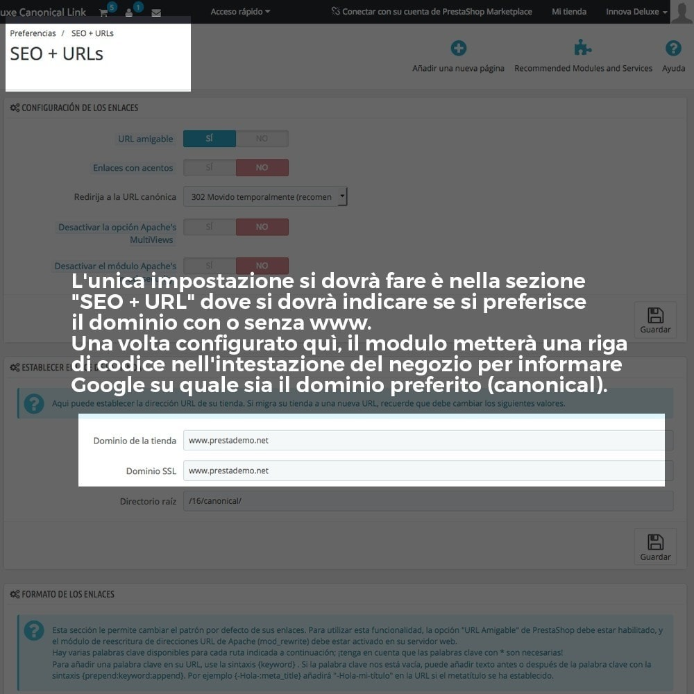 module - URL & Redirect - Informazione URL reindirizzamento canonico per Google - 3