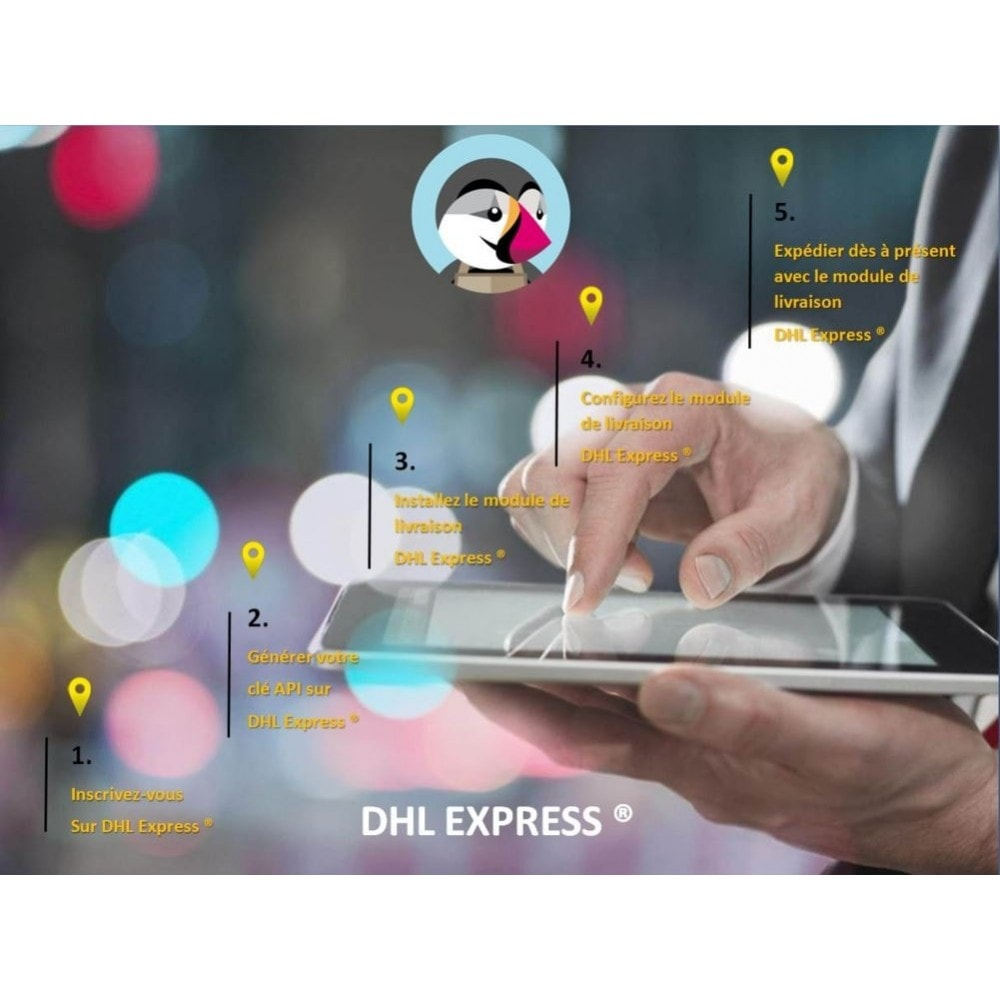 module - Delivery Tracking - DHL EXPRESS ® Official - 2
