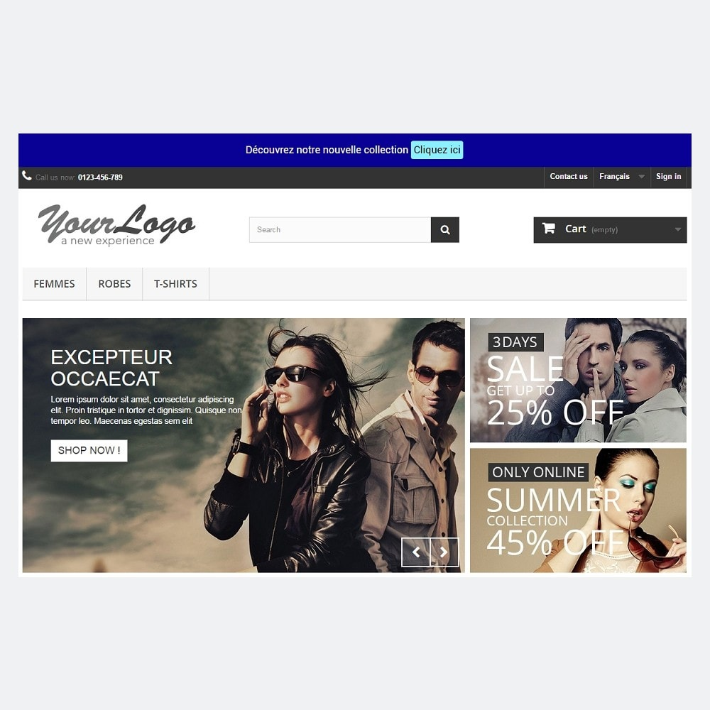 pack - Les offres du moment - Faites des économies ! - Promo (Pack) : Newsletter Mailchimp + Bandeau Promo - 10