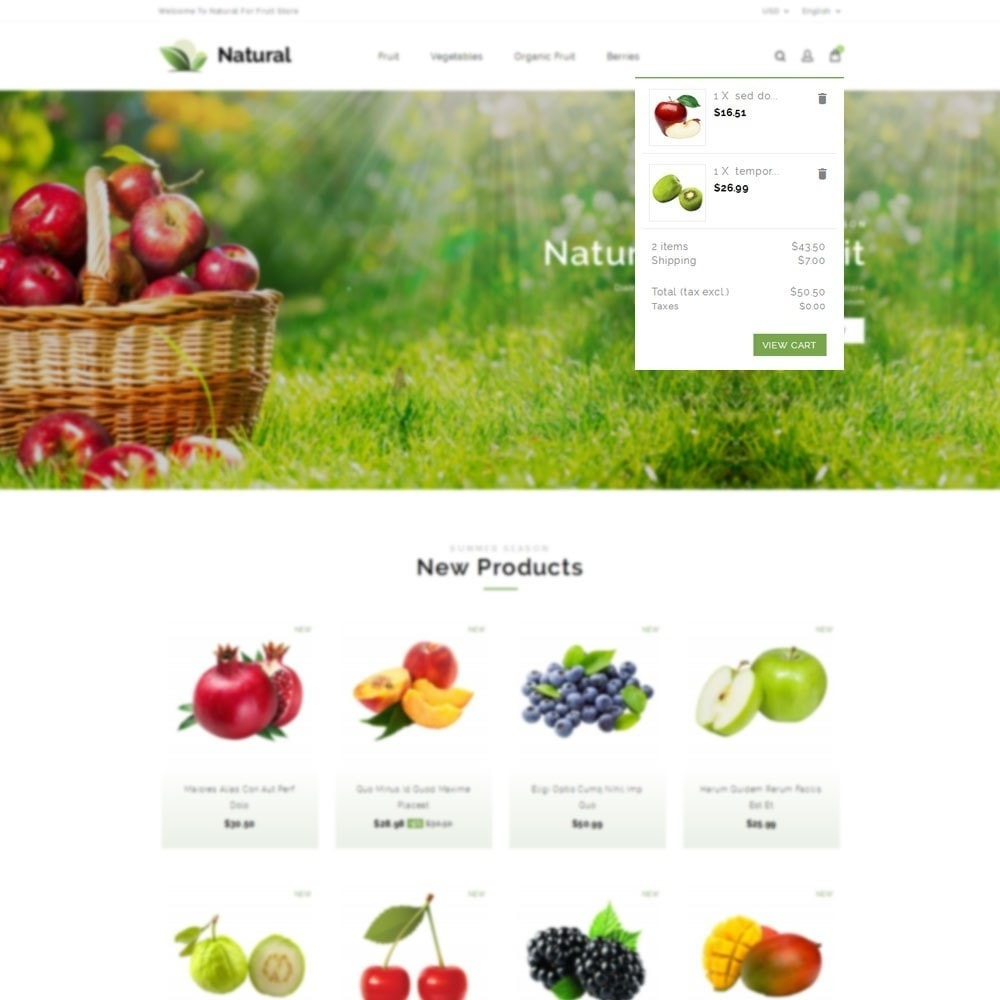 theme - Lebensmittel & Restaurants - Natural Fruit Store - 7