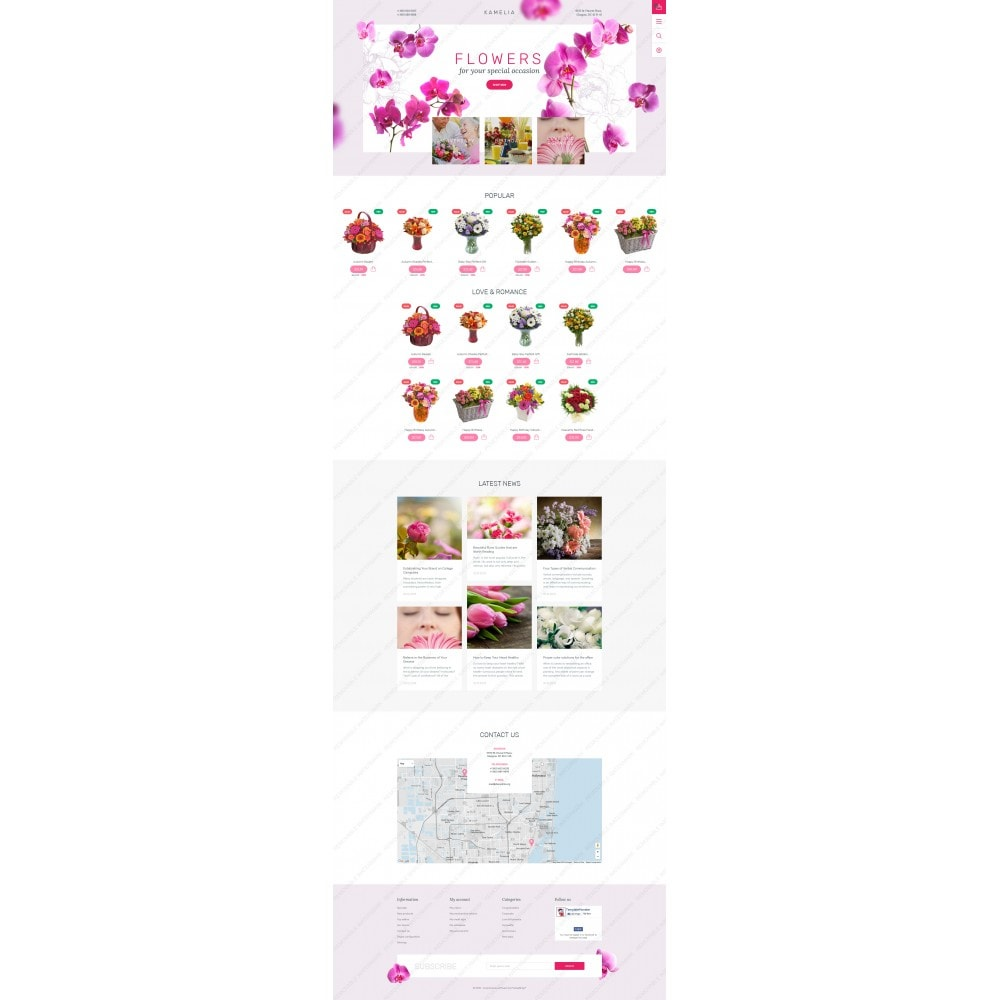 theme - Gifts, Flowers & Celebrations - Kamelia - 5