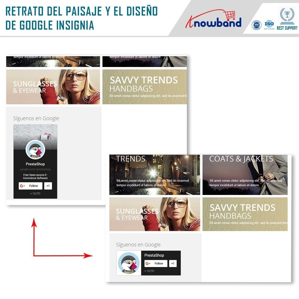 module - Widgets para redes sociales - Knowband - Insignia de Google Plus - 2