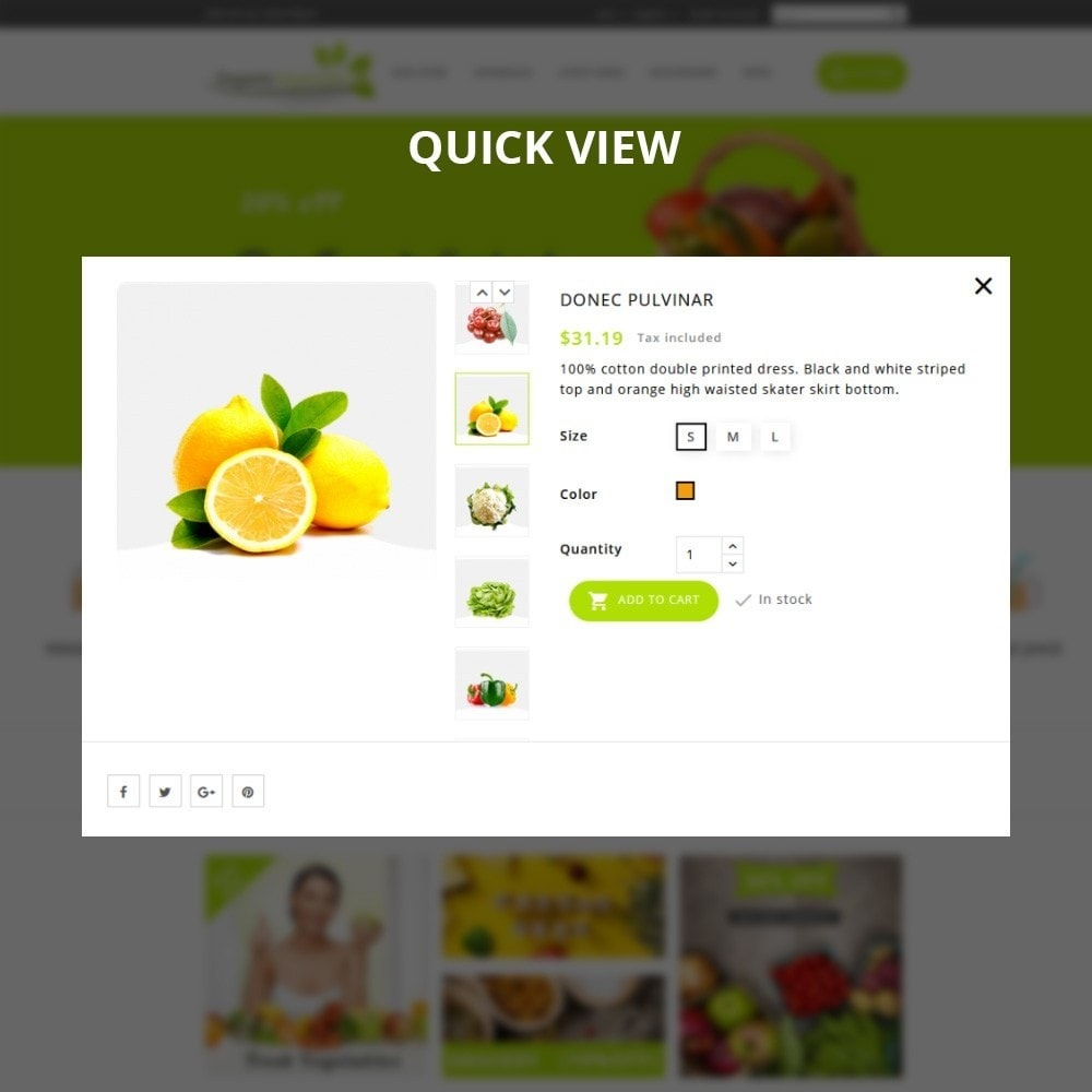 theme - Alimentos & Restaurantes - Organic Vegetable Store - 11