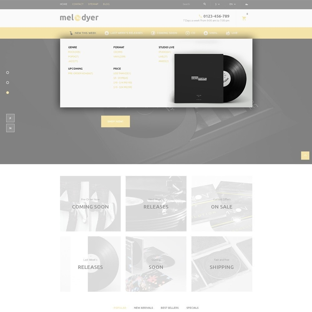 theme - Elettronica & High Tech - Melodyer - Negozio di CD Musicali Responsive - 6