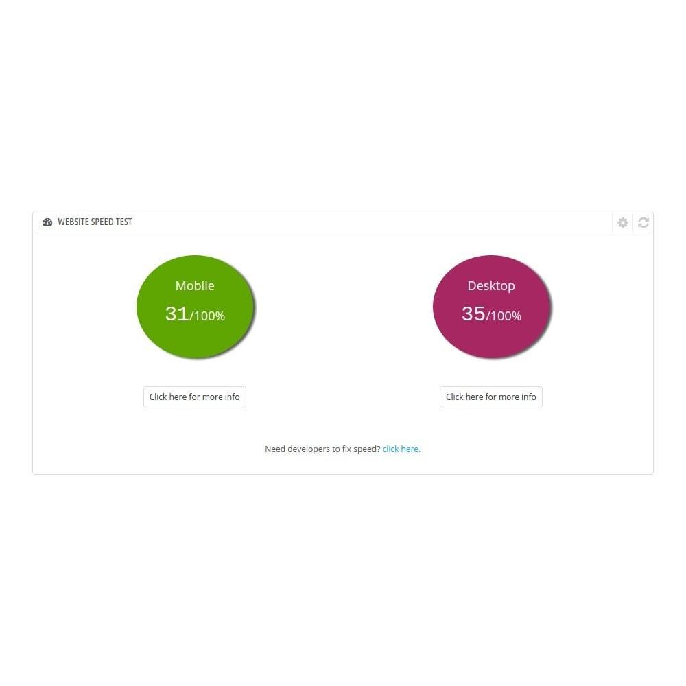 module - Performance du Site - Google Speed & Responsive Check Widgets - 2