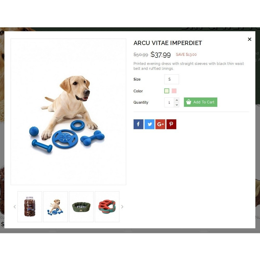 theme - Animaux - Dearpets Pet Store - 7