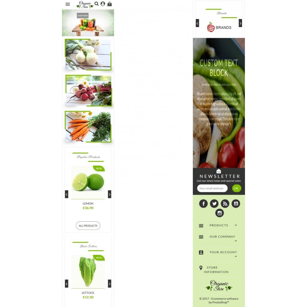 theme - Żywność & Restauracje - Organic Store - 7