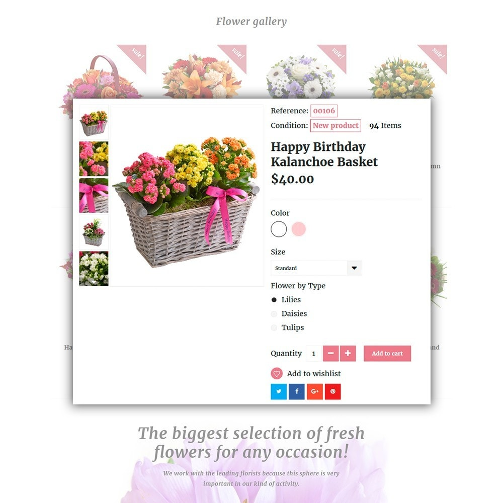 theme - Presentes, Flores & Comemorações - Pink Flora - 4