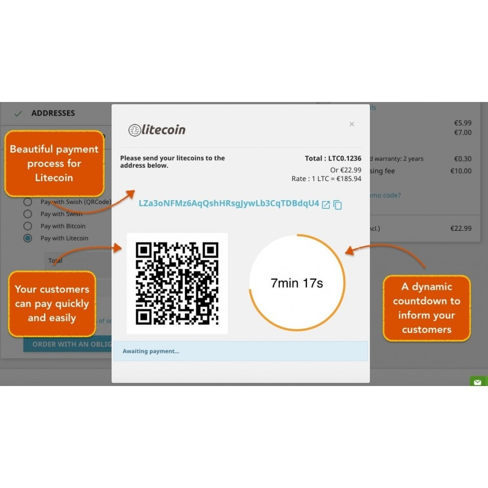 module - Andere Zahlungsmethoden - Litecoin - Accept litecoins directly into your wallet - 1