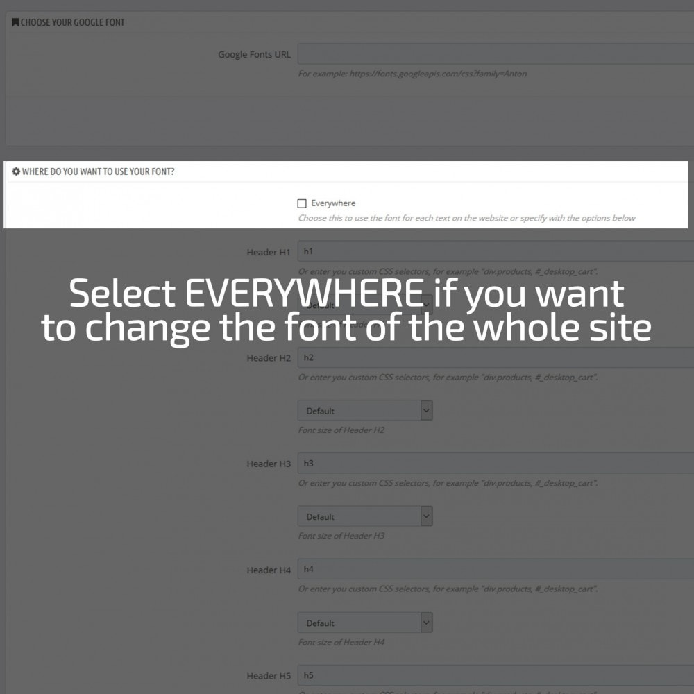 module - Page Customization - AN Google Fonts - 5