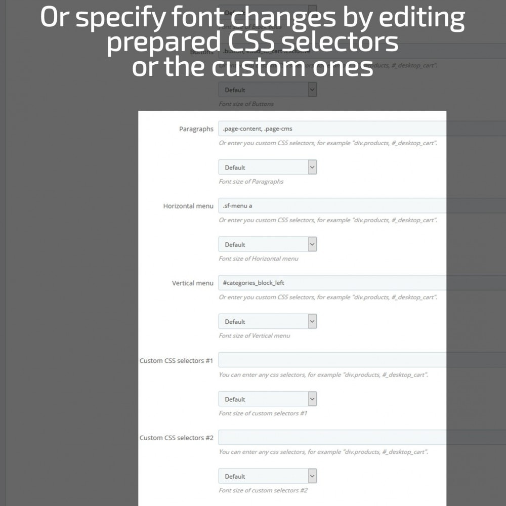 module - Page Customization - AN Google Fonts - 8